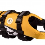 Want to save your dog's life? Buy a doggy life jacket