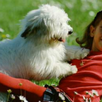 3 training tips to ensure good greeting behavior
