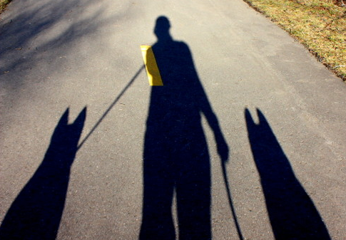Dog shadow with leash