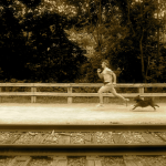 Running with your dog: the basics