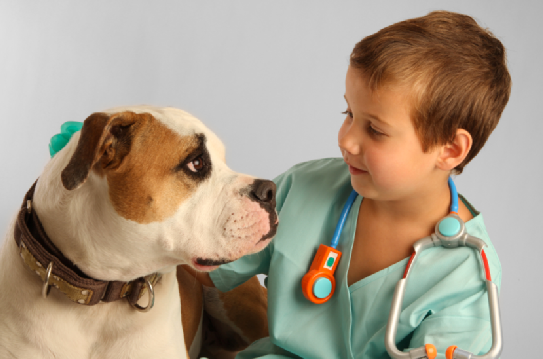 Dog with little kid vet
