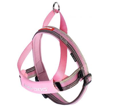 EzyDog QuickFit harness candy close-up