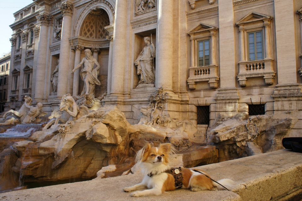 Montecristo Travels Rome