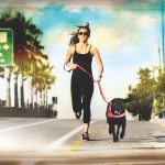 Gear For Running With Your Dog