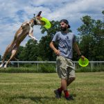 A Home on the Road: @thecanineexperience